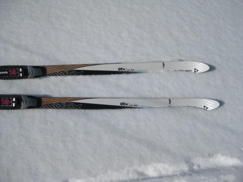 Fischer Spider 62 Skis