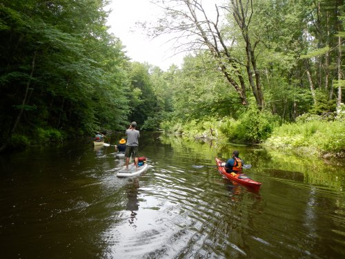 Stand up paddle boarding on the Stroudwater River.
