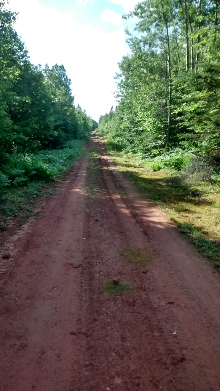 Prince Edward Island dirt road
